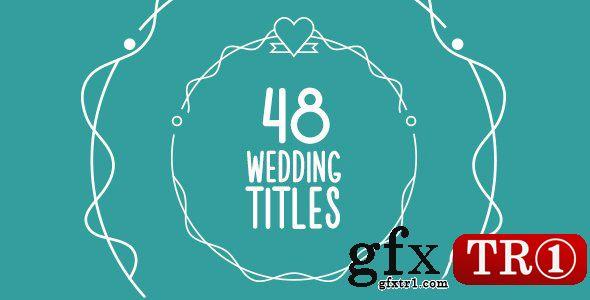 AE模板 48款西式婚礼logo标志字幕标题mg动画设计15673904