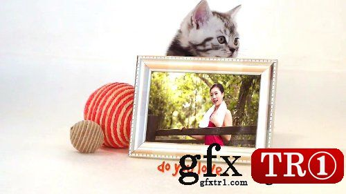 AE模板 可爱的猫场景相册照