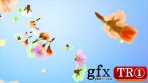 花和花瓣徽标logo演绎25477526