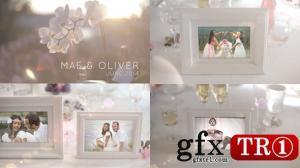 AE模板 金婚银婚纪念开场视频婚礼庆典暖场 6714159