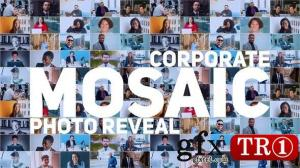 Mosaic Photo Reveal   Corporate Logo 30636914