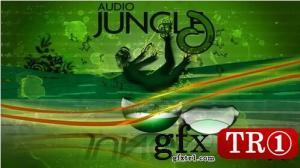 AudioJungle - India - 32321114