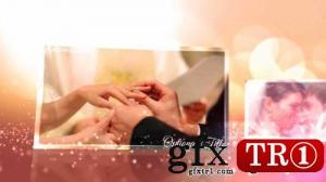 CG天下 AE模板 婚礼庆典浪漫粒子图文幻灯片开场7585438