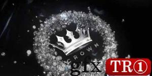 钻石徽标显示Diamond Logo Reveal 28344952