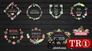 CG天下 AE模板  婚礼字幕标题花框婚礼字幕标题  072492352