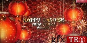 农历新年Chinese New Year 25491964