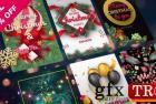 圣诞节Instagram故事25333544