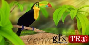 AE模板 绿色环保野生自然logo标志演绎 237632