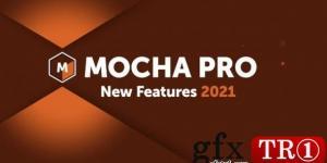 Boris FX Mocha Pro 2021 v8.0(WIN + OFX)