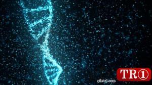 CG天下 AE模板  数字DNA分子结构背景视频素材 20506405