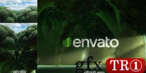西兰花徽标开场  自然,生态,素食主义-25039371