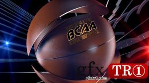 AE模板 篮球之夜开场片头  4123587