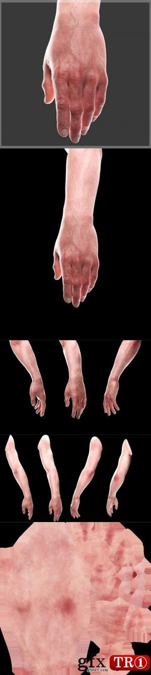 3D模型 CG手低模  Hand CG Low Poly 3D Model