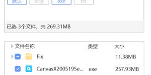 Canvas X 20.0 Build 519 win
